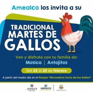 Inicia en Amealco Carnaval de Gallos 2020 1