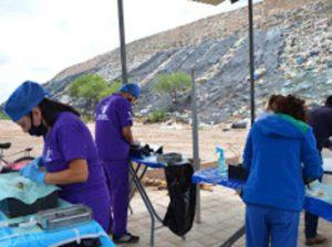Arranca en Tequisquiapan campaña de esterilización canina gratuita 1